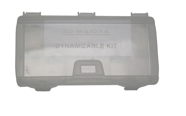 Sterilisation case for dynamizable set
